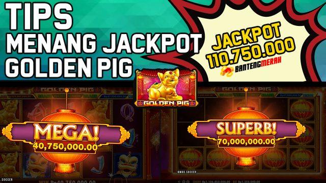 Tips Menang Slot Online Pragmatic Play Golden Pig