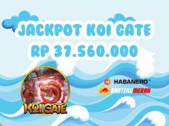 Slot Koi Gate Habanero