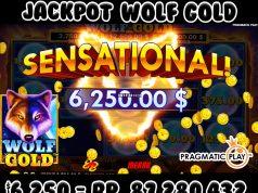 tips menang jackpot wolf gold bantengmerah